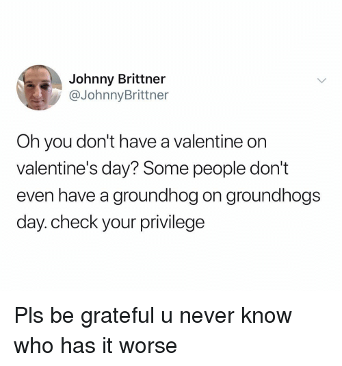 Valentine's Day, Dank Memes, and Never: Johnny Brittner  @JohnnyBrittner  Oh you don't have a valentine on  valentine's day? Some people don't  even have a groundhog on groundhogs  day.check your privilege Pls be grateful u never know who has it worse