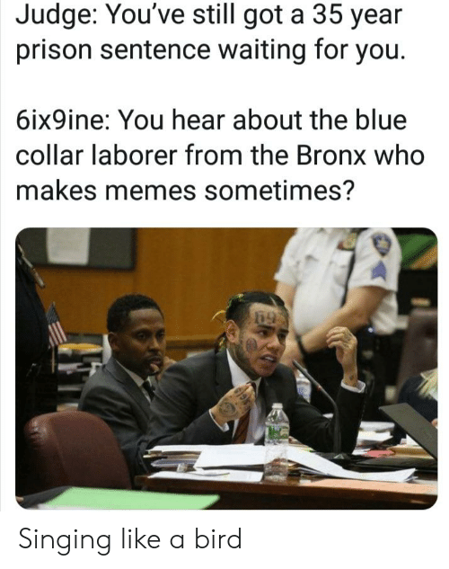 Memes, Reddit, and Singing: Judge: You've still got a 35 year  prison sentence waiting for you.  6ix9ine: You hear about the blue  collar laborer from the Bronx who  makes memes sometimes? Singing like a bird