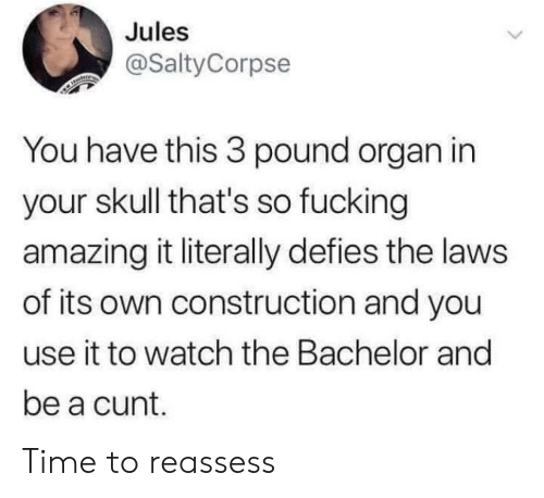 Fucking Amazing: Jules  @SaltyCorpse  You have this 3 pound organ in  your skull that's so fucking  amazing it literally defies the laws  of its own construction and you  use it to watch the Bachelor and  be a cunt. Time to reassess