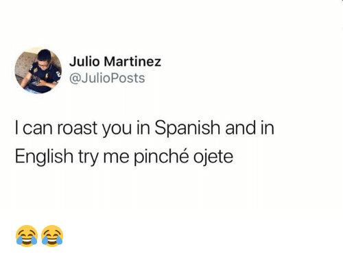 Pinche: Julio Martinez  @JulioPosts  Dp  I can roast you in Spanish and in  English try me pinché ojete 😂😂