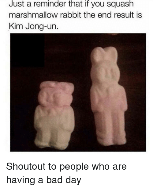 just a reminder that: Just a reminder that if you squash  marshmallow rabbit the end result is  Kim Jong-un. Shoutout to people who are having a bad day