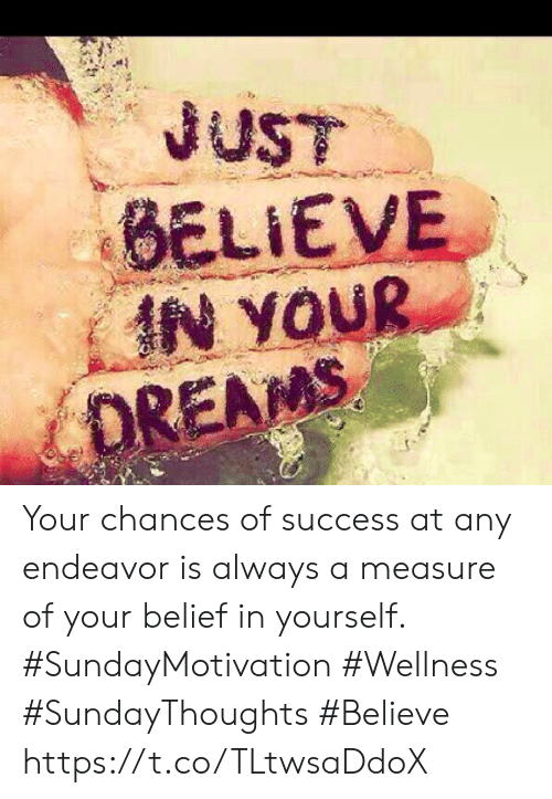 Belief, Dreams, and Success: JUST  BELIEVE  IN YOUR  DREAMS Your chances of success at any endeavor is always a measure  of your belief in yourself.  #SundayMotivation #Wellness  #SundayThoughts #Believe https://t.co/TLtwsaDdoX