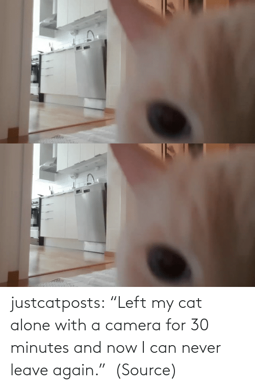 "Never: justcatposts:  ""Left my cat alone with a camera for 30 minutes and now I can never leave again.""  (Source)"