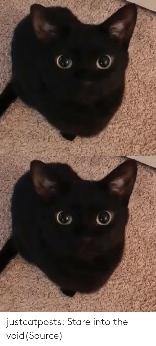 Into: justcatposts:  Stare into the void(Source)