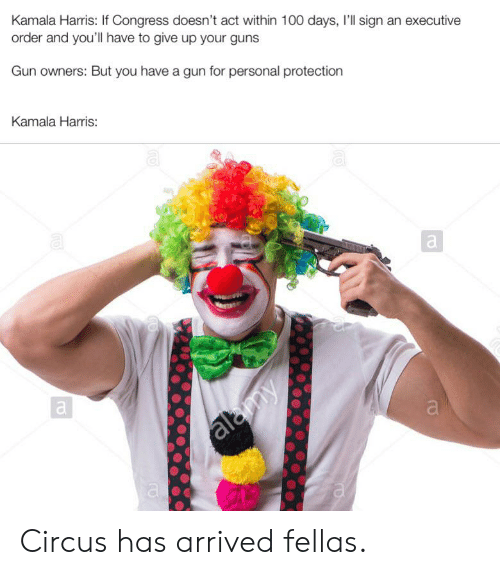 Guns, Personal, and Gun: Kamala Harris: If Congress doesn't act within 100 days, I'll sign an executive  order and you'll have to give up your guns  Gun owners: But you have a gun for personal protection  Kamala Harris:  almy Circus has arrived fellas.