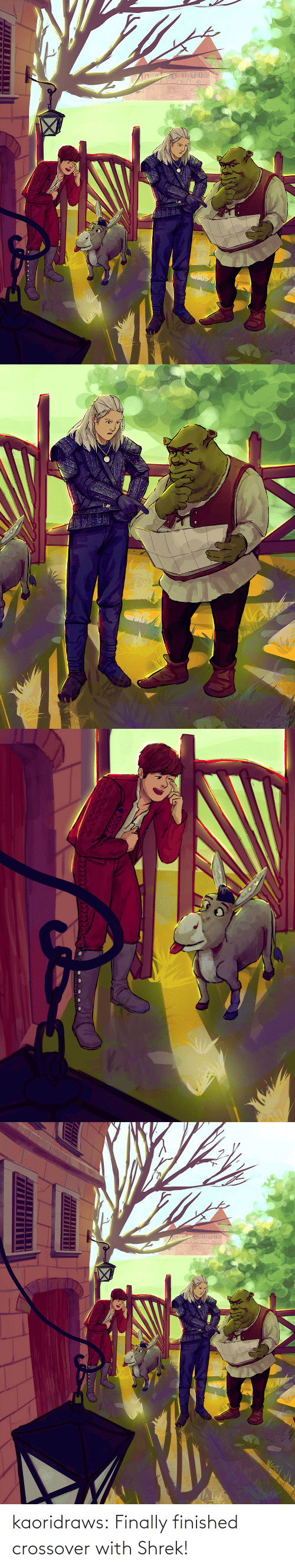 post: kaoridraws:  Finally finished crossover with Shrek!