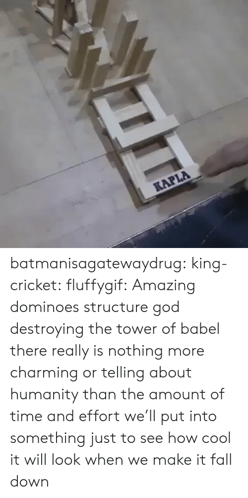 tower: KAPLA batmanisagatewaydrug: king-cricket:  fluffygif:  Amazing dominoes structure    god destroying the tower of babel  there really is nothing more charming or telling about humanity than the amount of time and effort we'll put into something just to see how cool it will look when we make it fall down