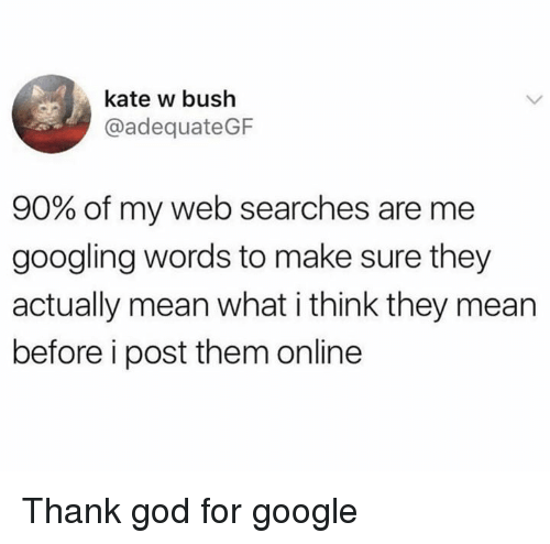 God, Google, and Memes: kate w bush  @adequateGF  90% of my web searches are me  googling words to make sure they  actually mean what i think they mean  before i post them online Thank god for google