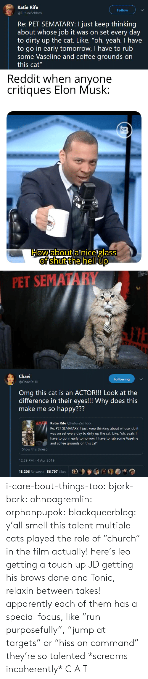 "talent: Katie Rife  Follow  FutureSchlock  Re: PET SEMATARY: I just keep thinking  about whose job it was on set every day  to dirty up the cat. Like, ""oh, yeah, I have  to go in early tomorrow, I have to rub  some Vaseline and coffee grounds on  this cat""   PET SEMATARY   Chavi  @ChaviStHill  Following  Omg this cat is an ACTOR!!! Look at the  difference in their eyes!!! Why does this  make me so happy???  772  Katie Rife @FutureSchlock  Re: PET SEMATARY: I just keep thinking about whose job it  was on set every day to dirty up the cat. Like, ""oh, yeah, I  have to go in early tomorrow, I have to rub some Vaseline  and coffee grounds on this cat  Show this thread  12:39 PM - 4 Apr 2019  13,206 Retweets 56,797 Likes  (e)乡參0 i-care-bout-things-too:  bjork-bork:  ohnoagremlin:  orphanpupok:  blackqueerblog: y'all smell this talent  multiple cats played the role of ""church"" in the film actually! here's leo getting a touch up JD getting his brows done and Tonic, relaxin between takes!   apparently each of them has a special focus, like ""run purposefully"", ""jump at targets"" or ""hiss on command"" they're so talented     *screams incoherently* C A T"