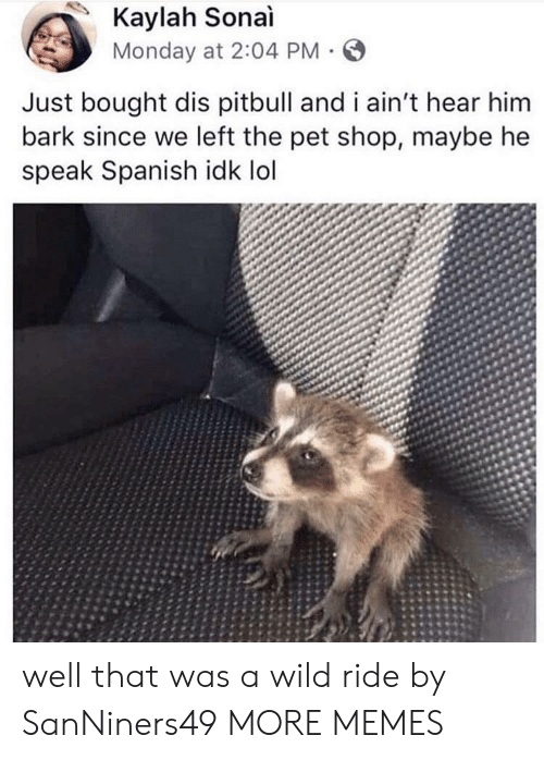 Dank, Lol, and Memes: Kaylah Sonai  Monday at 2:04 PM  Just bought dis pitbull and i ain't hear him  bark since we left the pet shop, maybe he  speak Spanish idk lol well that was a wild ride by SanNiners49 MORE MEMES