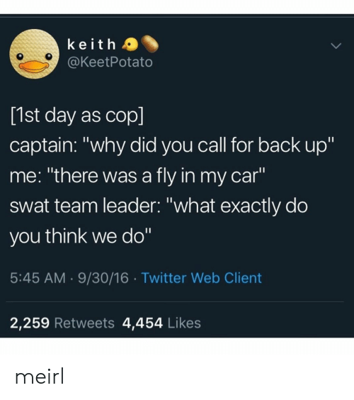 """Twitter, MeIRL, and Back: keith a  @KeetPotato  [1st day as cop]  captain: """"why did you call for back up""""  me: """"there was a fly in my car""""  swat team leader: """"what exactly do  you think we do""""  5:45 AM.9/30/16 Twitter Web Client  2,259 Retweets 4,454 Likes meirl"""