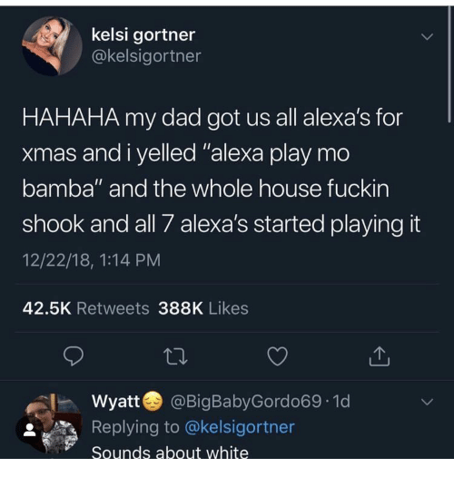 "Dad, House, and White: kelsi gortner  @kelsigortner  HAHAHA my dad got us all alexa's for  xmas and i yelled ""alexa play mo  bamba"" and the whole house fuckin  shook and all 7 alexa's started playing it  12/22/18, 1:14 PM  42.5K Retweets 388K Likes  Wyatt  @BigBabyGordo69 1d  LL  Replying to @kelsigortner  Sounds about white"