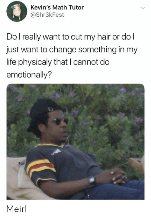Life, Hair, and Math: Kevin's Math Tutor  @Shr3kFest  Do l really want to cut my hair or do l  just want to change something in my  life physicaly that I cannot do  emotionally? Meirl