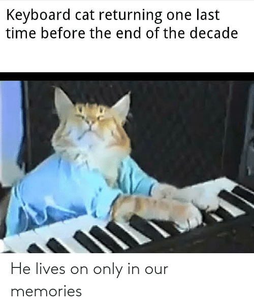 the end of the: Keyboard cat returning one last  time before the end of the decade He lives on only in our memories
