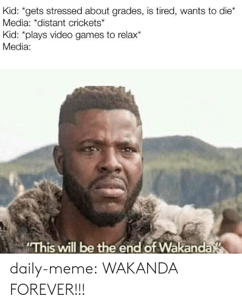 stressed: Kid: *gets stressed about grades, is tired, wants to die*  Media: *distant crickets*  Kid: *plays video games to relax*  Media:  This will be the end of Wakanda daily-meme:  WAKANDA FOREVER!!!
