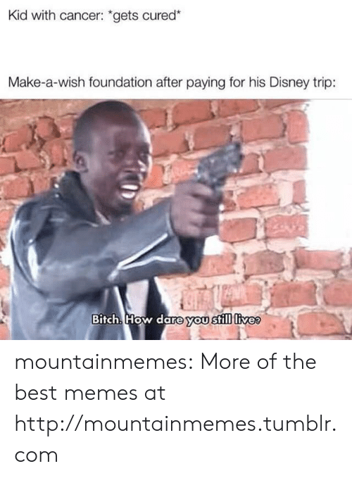 """foundation: Kid with cancer: """"gets cured*  Make-a-wish foundation after paying for his Disney trip:  Bitch. How dare you still livee mountainmemes:  More of the best memes at http://mountainmemes.tumblr.com"""