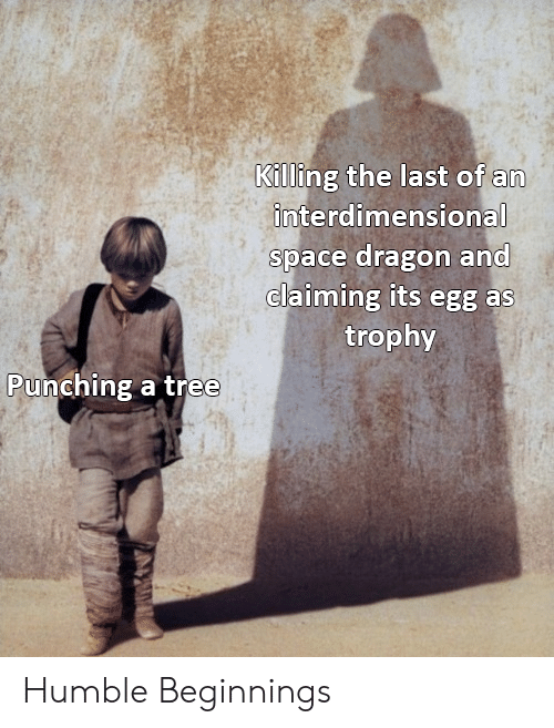 trophy: Killing the last of an  interdimensional  space dragon and  claiming its egg as  trophy  Punching a tree Humble Beginnings