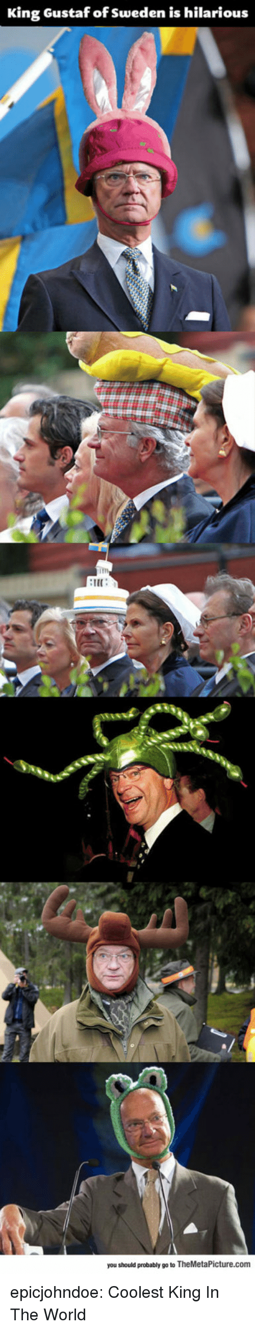 Tumblr, Blog, and Sweden: King Gustaf of Sweden is hilarious  im  IE  you should probably go to TheMetaPicture.com epicjohndoe:  Coolest King In The World