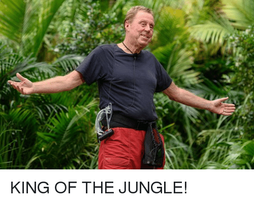 Memes, 🤖, and King: KING OF THE JUNGLE!