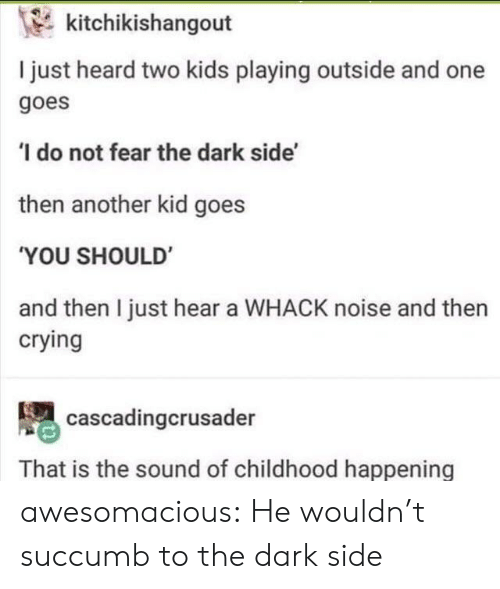 Crying, Tumblr, and Blog: kitchikishangout  I just heard two kids playing outside and one  goes  'I do not fear the dark side'  then another kid goes  'YOU SHOULD  and then I just hear a WHACK noise and then  crying  cascadingcrusader  That is the sound of childhood happening awesomacious:  He wouldn't succumb to the dark side