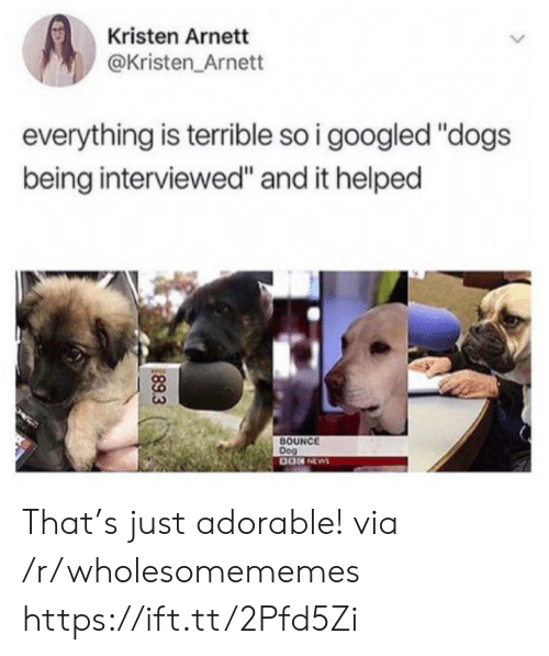 "Kristen: Kristen Arnett  @Kristen_Arnett  everything is terrible so i googled ""dogs  being interviewed"" and it helped  BOUNCE  Dog  89.3 That's just adorable! via /r/wholesomememes https://ift.tt/2Pfd5Zi"