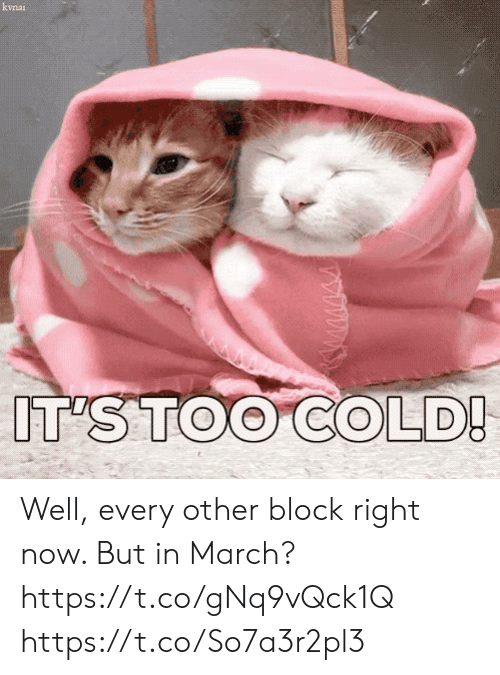 Memes, Cold, and 🤖: kvnai  IT'S TOO COLD! Well, every other block right now. But in March? https://t.co/gNq9vQck1Q https://t.co/So7a3r2pl3