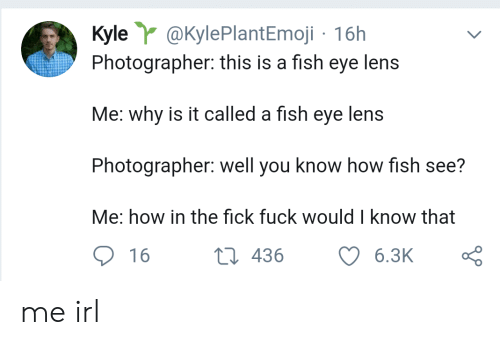 Fish, Fuck, and Irl: Kyle @KylePlantEmoji 16h  Photographer: this is a fish eye lens  Me: why is it called a fish eye lens  Photographer: well you know how fish see?  Me: how in the fick fuck would I know that  t 436  6.3K  16 me irl