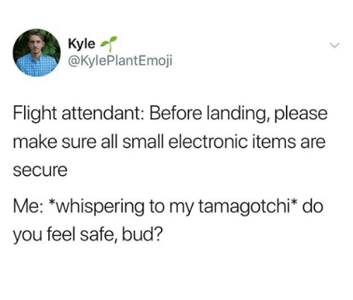 tamagotchi: Kyle  @KylePlantEmoji  Flight attendant: Before landing, please  make sure all small electronic items are  secure  Me: *whispering to my tamagotchi* do  you feel safe, bud?