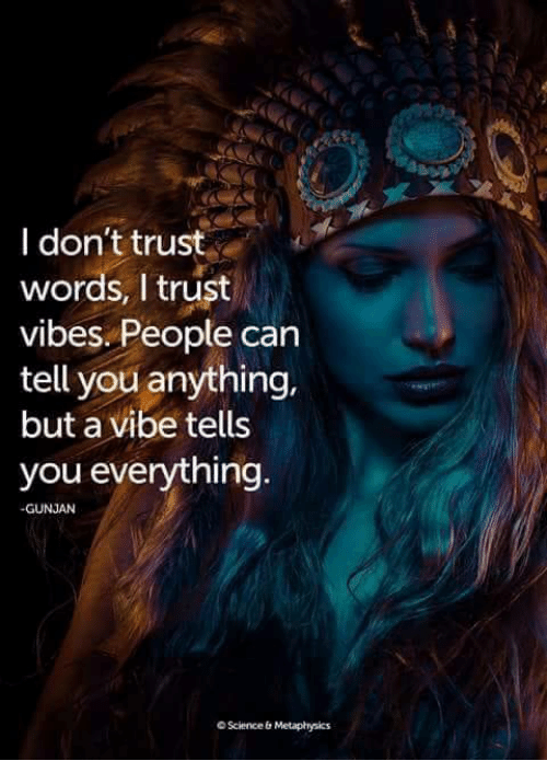 Memes, Science, and Metaphysics: l don't trust  words, I trust  vibes. People can  tell you anything,  but a vibe tells  you everything  GUNJAN  O Science & Metaphysics