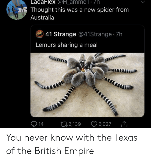 you never know: LacaFlex @H_amme1 . /h  Thought this was a new spider from  Australia  41 Strange @41 Strange 7h  Lemurs sharing a meal  14  12,139  6,027 You never know with the Texas of the British Empire