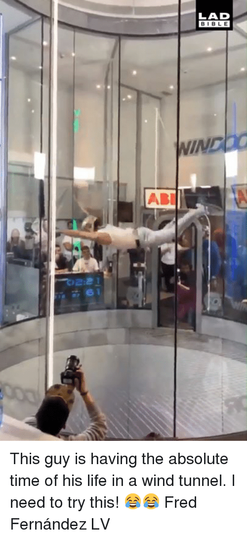 Dank, Life, and Bible: LAD  BIBLE  IND  ABI  2:2 This guy is having the absolute time of his life in a wind tunnel. I need to try this! 😂😂  Fred Fernández LV