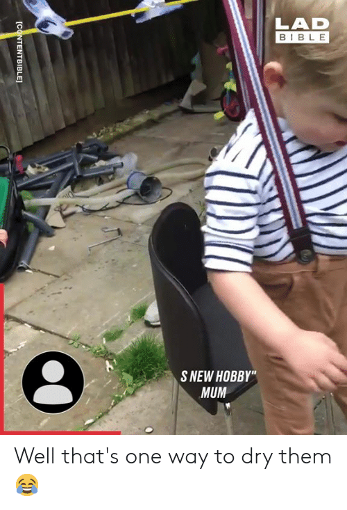"Dank, Bible, and 🤖: LAD  BIBLE  S NEW HOBBY""  MUM  [CONTENTBIBLE] Well that's one way to dry them 😂"