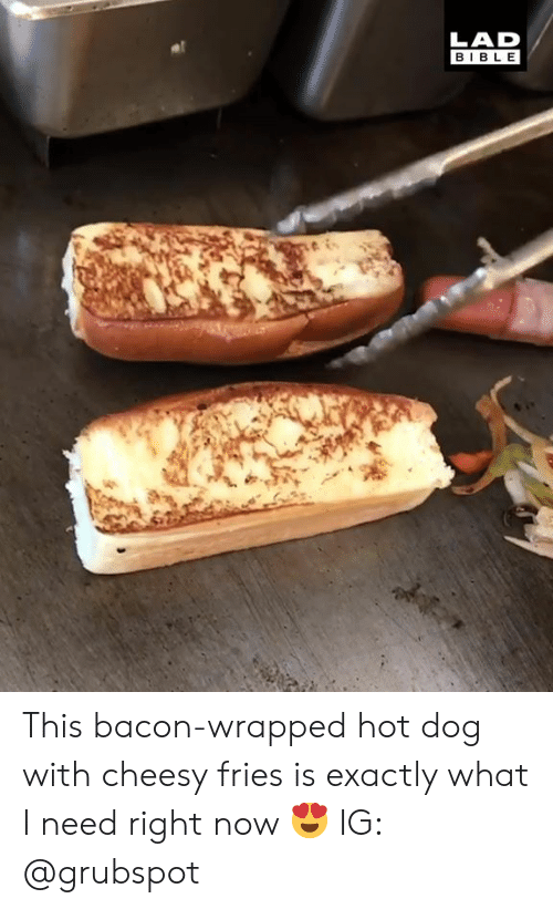 Dank, Bible, and Bacon: LAD  BIBLE This bacon-wrapped hot dog with cheesy fries is exactly what I need right now 😍  IG: @grubspot