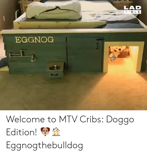 MTV: LAD  EGGNOG Welcome to MTV Cribs: Doggo Edition! 🐶🏠  Eggnogthebulldog