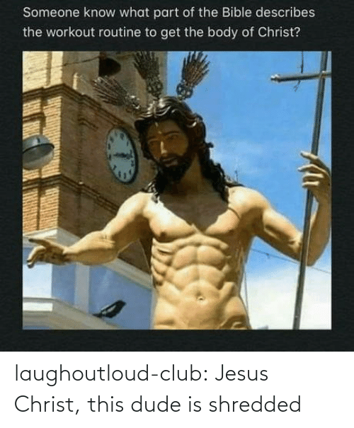 dude: laughoutloud-club:  Jesus Christ, this dude is shredded