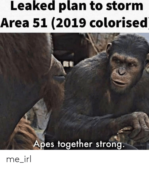 Strong, Irl, and Me IRL: Leaked plan to storm  Area 51 (2019 colorised  Apes together strong. me_irl