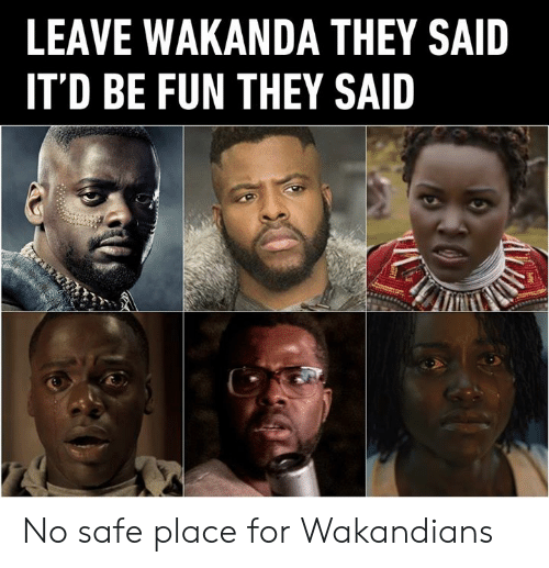 Dank, 🤖, and Fun: LEAVE WAKANDA THEY SAID  IT'D BE FUN THEY SAID No safe place for Wakandians