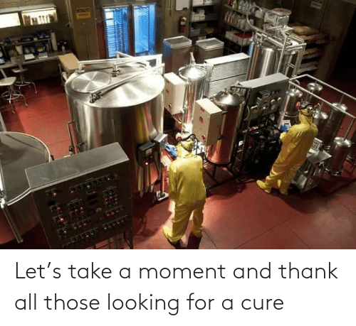 Looking, Cure, and All: Let's take a moment and thank all those looking for a cure