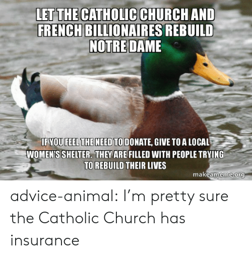 Catholic: LET THE CATHOLIC CHURCH AND  FRENCH BILLIONAIRES REBUILD  NOTRE DAME  IFYOU FEELTHE NEED TO DONATE, GIVE TOA LOCAL  WOMEN'S SHELTER. THEY ARE FILLED WITH PEOPLE TRYING  TO REBUILD THEIR LIVES  makeameme org advice-animal:  I'm pretty sure the Catholic Church has insurance