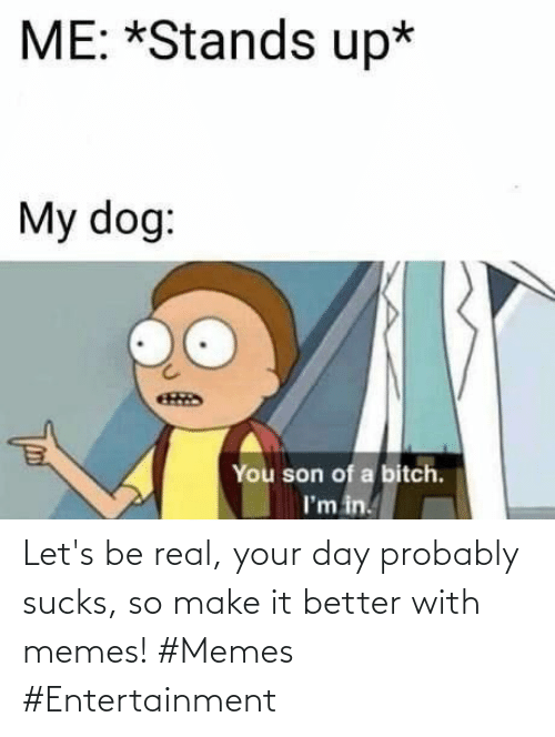 better: Let's be real, your day probably sucks, so make it better with memes! #Memes #Entertainment