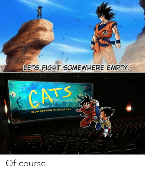 let's: LETS FIGHT SOMEWHERE EMPTY.  CATS  MEOW PLAYING IN THEATERS Of course