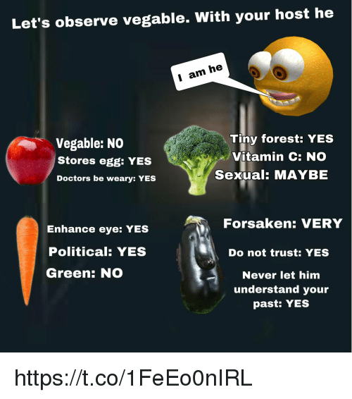 Never, Yes, and Eye: Let's observe vegable. With your host he  I am he  Vegable: NO  Stores egg: YES  Doctors be weary: YES  Tiny forest: YES  Vitamin C: NO  Sexual: MAYBE  Forsaken: VERY  Enhance eye: YES  Political: YES  Green: NO  Do not trust: YES  Never let him  understand your  past: YES https://t.co/1FeEo0nIRL