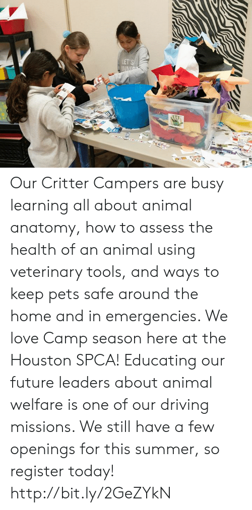 Driving, Future, and Love: LET'S  ONNE Our Critter Campers are busy learning all about animal anatomy, how to assess the health of an animal using veterinary tools, and ways to keep pets safe around the home and in emergencies. We love Camp season here at the Houston SPCA!  Educating our future leaders about animal welfare is one of our driving missions.   We still have a few openings for this summer, so register today! http://bit.ly/2GeZYkN