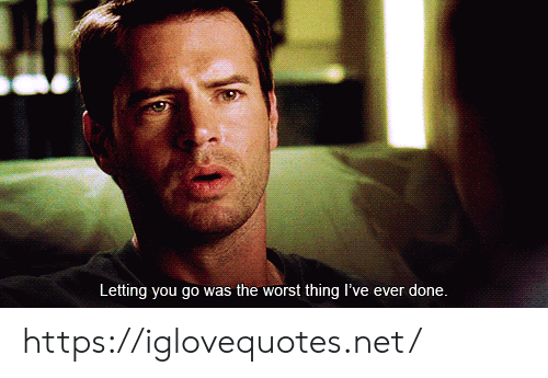 The Worst, Net, and Thing: Letting you go was the worst thing I've ever done. https://iglovequotes.net/