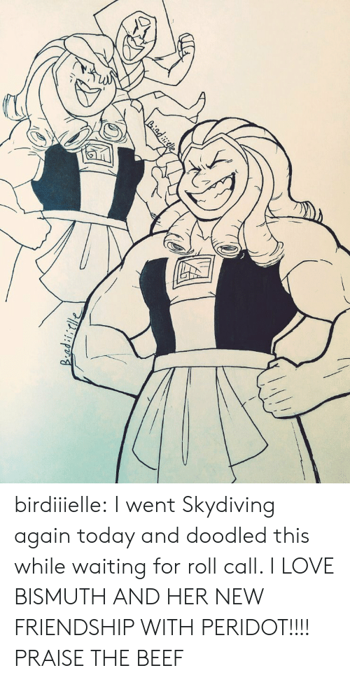 Beef, Love, and Tumblr: Liadiele birdiiielle:  I went Skydiving again today and doodled this while waiting for roll call. I LOVE BISMUTH AND HER NEW FRIENDSHIP WITH PERIDOT!!!!  PRAISE THE BEEF