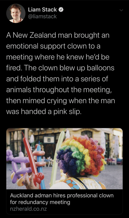 Animals, Crying, and New Zealand: Liam Stack  @liamstack  A New Zealand man brought an  emotional support clown to a  meeting where he knew he'd be  fired. The clown blew up balloons  and folded them into a series of  animals throughout the meeting,  then mimed crying when the man  was handed a pink slip.  Auckland adman hires professional clown  for redundancy meeting  nzherald.co.nz