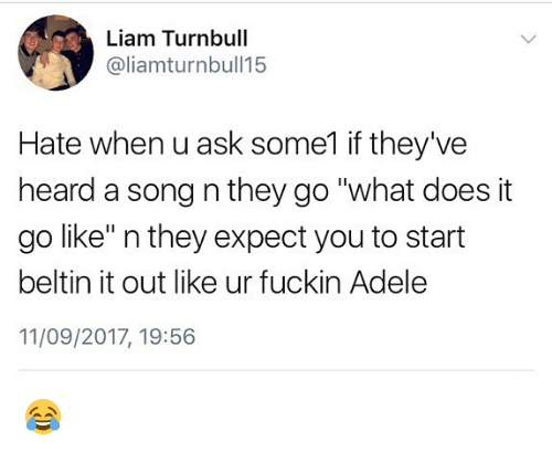 "Adele, Memes, and What Does: Liam Turnbull  @liamturnbull15  Hate when u ask some1 if they've  heard a song n they go ""what does it  go like"" n they expect you to start  beltin it out like ur fuckin Adele  11/09/2017, 19:56 😂"