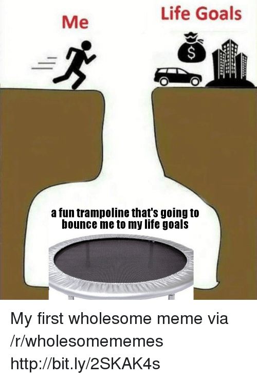 Wholesome Meme: Life Goals  Me  a fun trampoline that's going to  bounce me to my life goals My first wholesome meme via /r/wholesomememes http://bit.ly/2SKAK4s