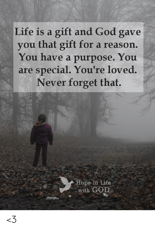 God, Life, and Memes: Life is a gift and God gave  you that gift for a reason.  You have a purpose. You  special. You're loved.  Never forget that.  are  Hope in Life  with GOD <3