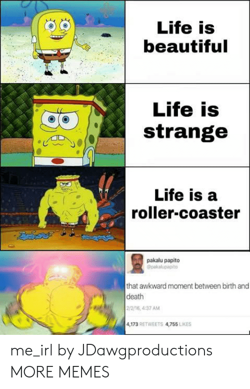 2 2: Life is  beautiful  Life is  strange  Life is a  roller-coaster  pakalu papito  Opakalupapito  that awkward moment between birth and  death  2/2/16, 4:37 AM  4,173 RETWEETS 4,755 LIKES me_irl by JDawgproductions MORE MEMES